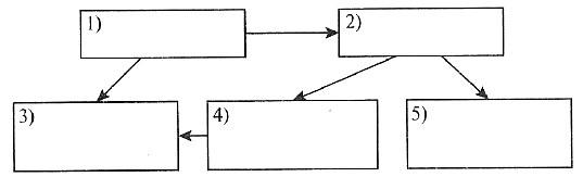 Тест: Многообразие схем. Использование графов